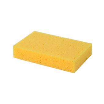 General Purpose Sponge